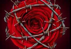 A cheating wife usually means you the husband isn't taking care of business. Look at your self (remove the barb wire from the beautiful red rose) fix yourself first!